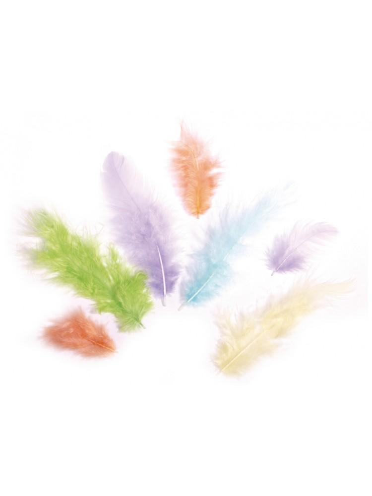 Dekoratyvinių plunksnų rinkinys 3-10cm 10g